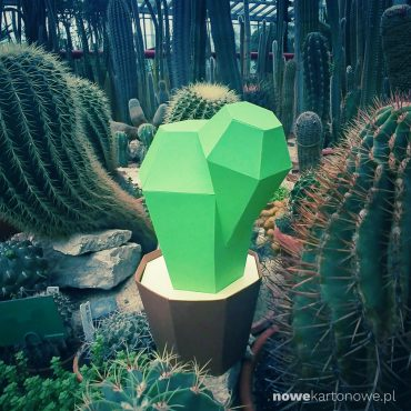 nowekartonowe - cactus